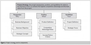 Project Strategy Components